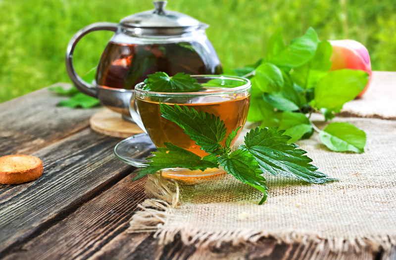 чай из крапивы для потенции фото